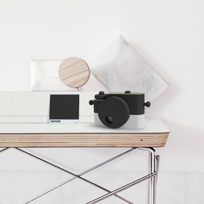 black-wooden-camera-twig-creative