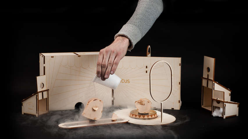 wooden-toy-phisics-circus