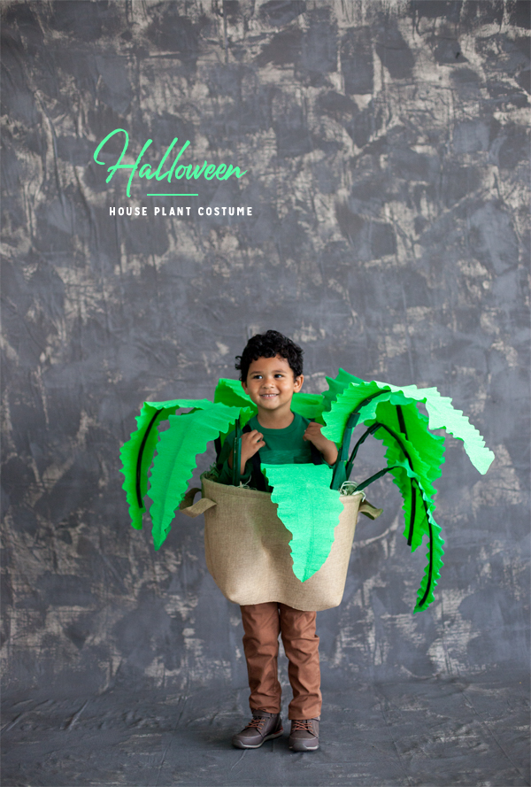 halloween-house-plant-costume