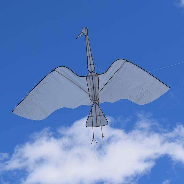 Haptic Lab Makes You Dream About Flying Animals