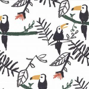 No Fred toucan wallpaper