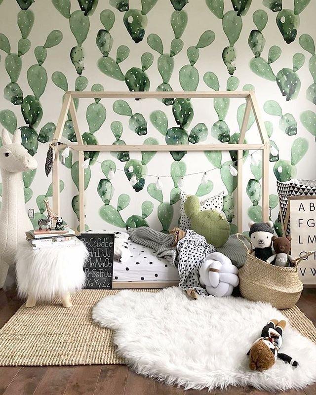 Green cactus wallpaper
